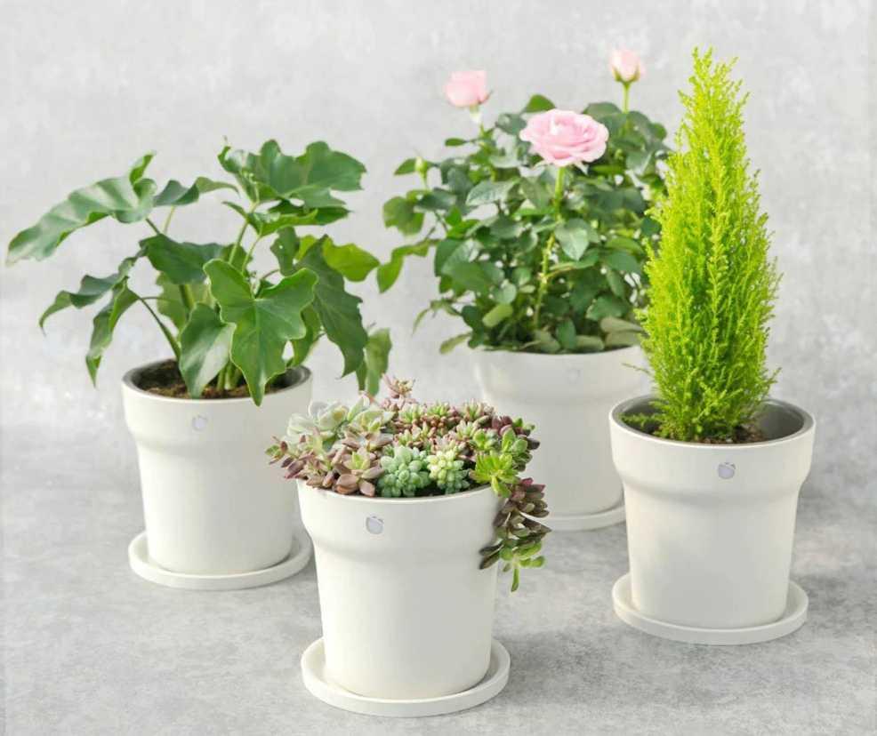 Горшок для домашних цветов Xioami
