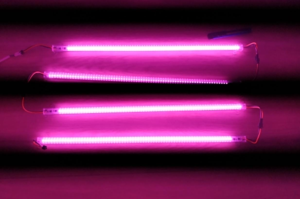 LED-лента для растений