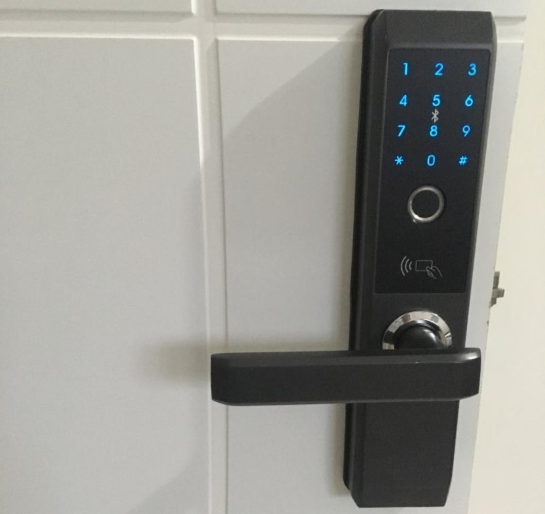 Биометрический дверной замок LACHCO